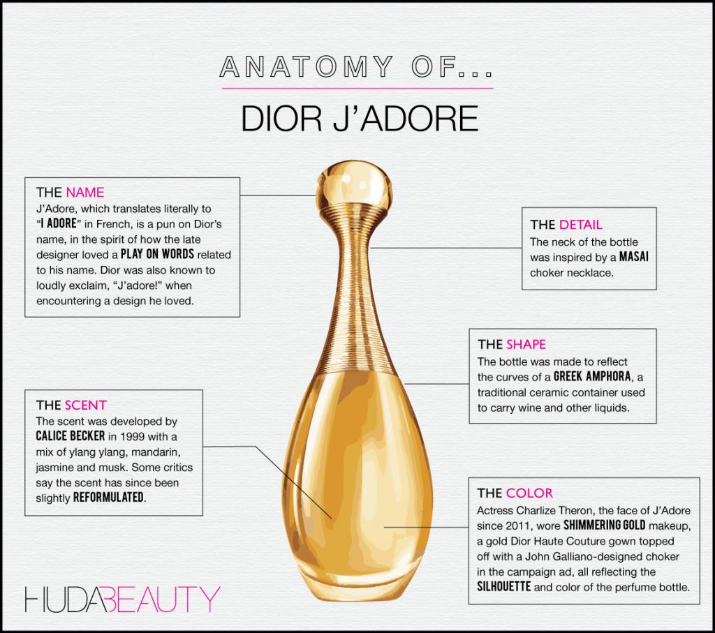 Anatomy-Jadore-1