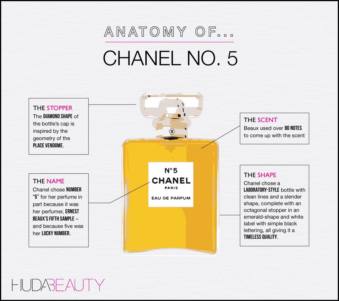 anatomy-of-chanelno5