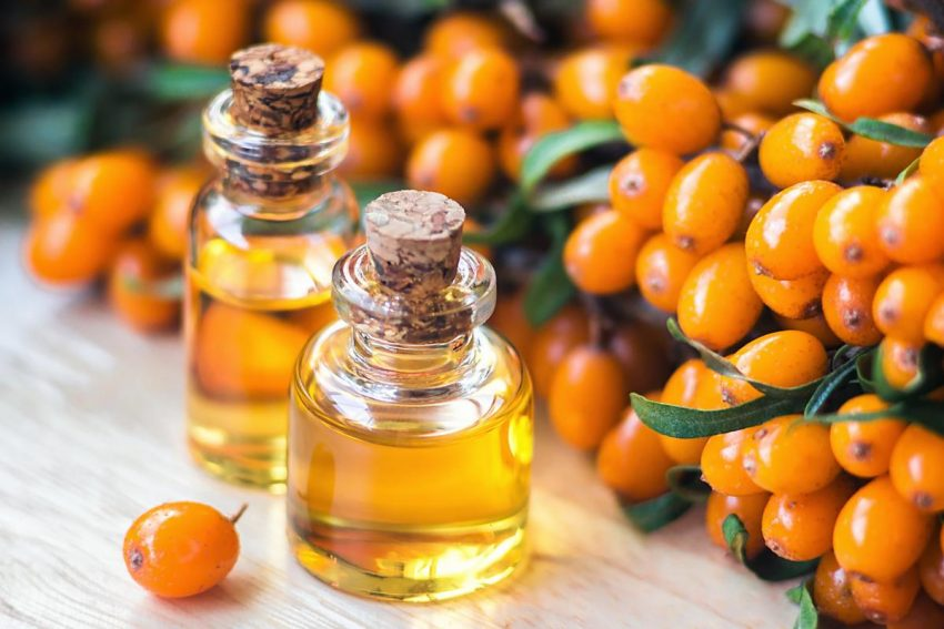 anti-ageing sea buckthorn berry oil