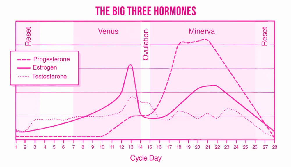 The-Big-Three-Hormones