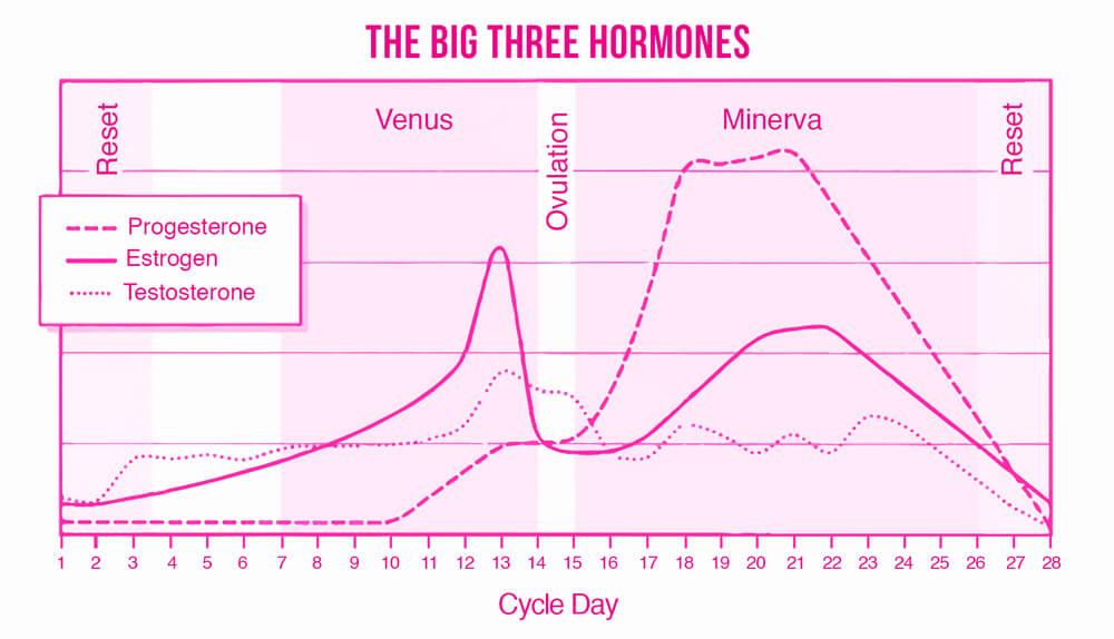 The-Big-Three-Hormones
