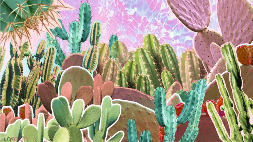 cactus water (1)