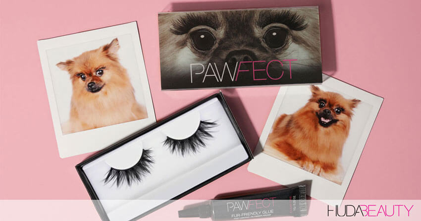 Surprise! Beautify Your Pooches With Our Pet-Friendly Lashes!