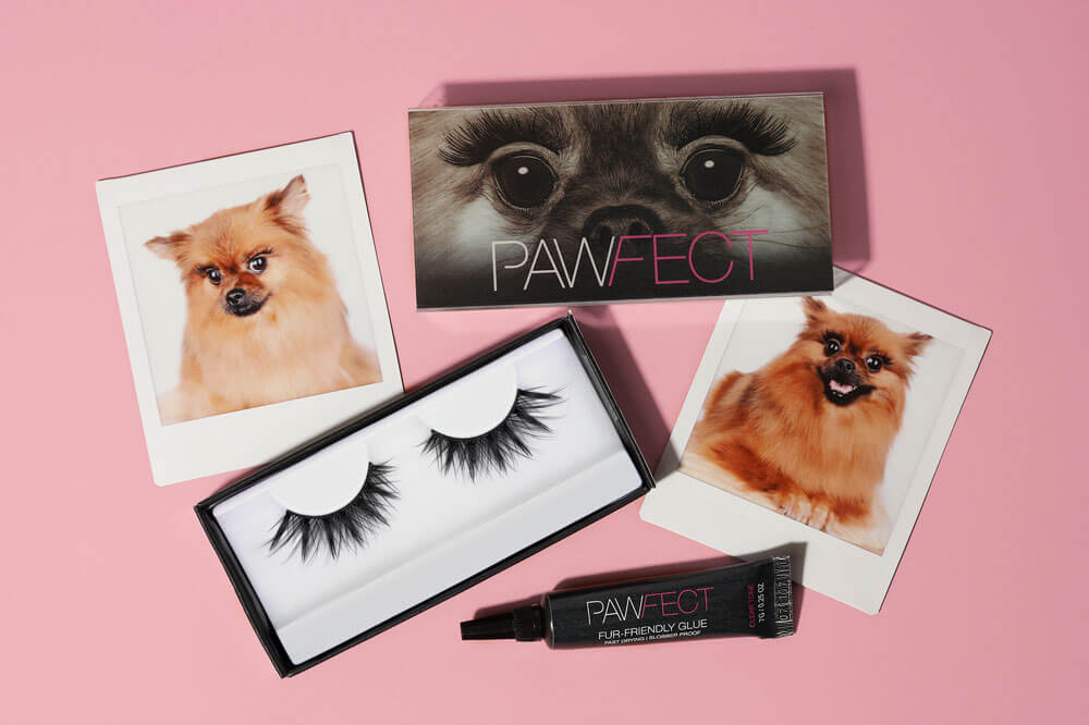 PAWfect lashes