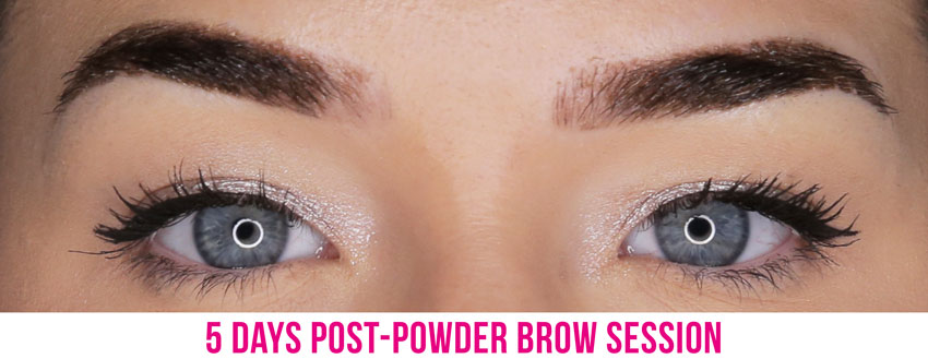 ombre powder brows healing